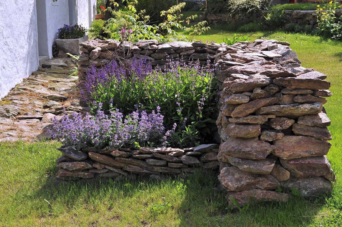 Kámen a květiny
