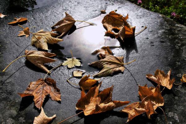 Listopadové počasí