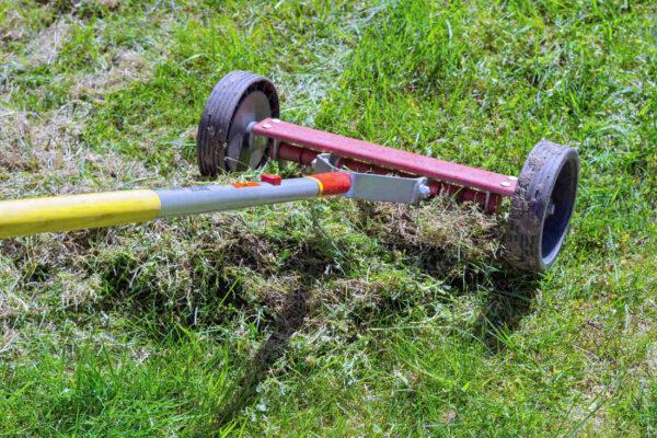Ruční renovace trávníku