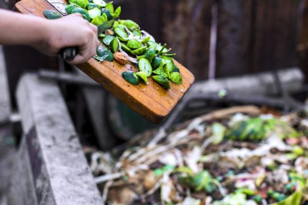 Kompostování organických zbytků