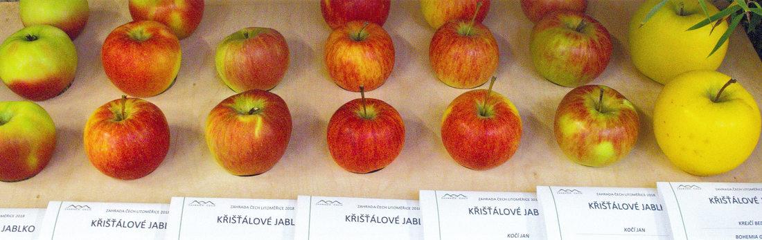 Kategorie Křišťálové jablko