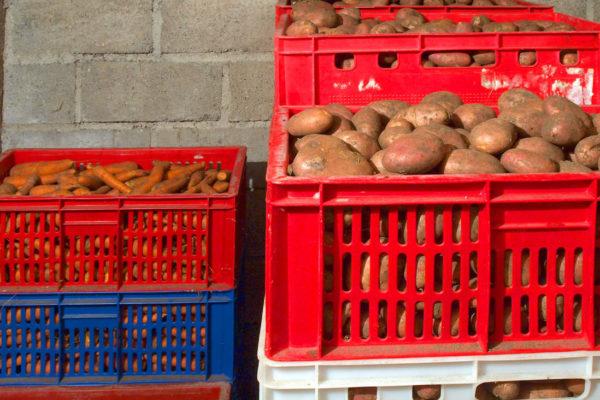 Zelenina ve sklepě