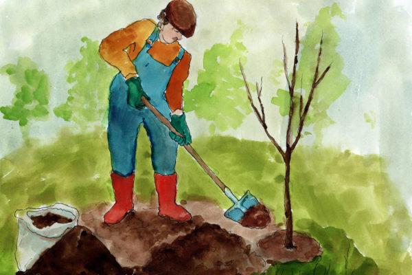 Živiny pro stromek