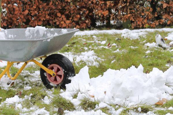 Sníh pro předjarní zavlažení rostlin