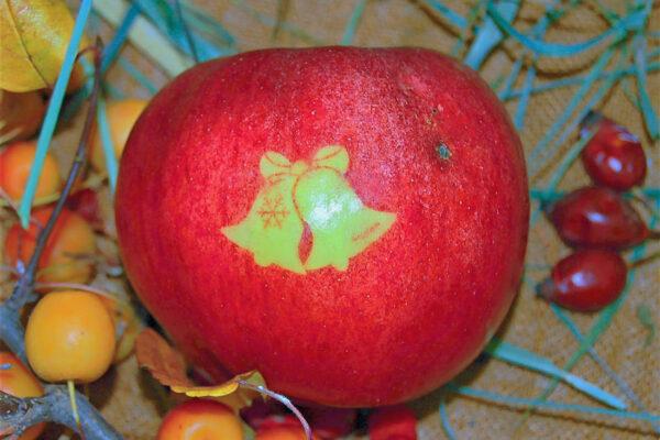 Jablko s vánočním motivem