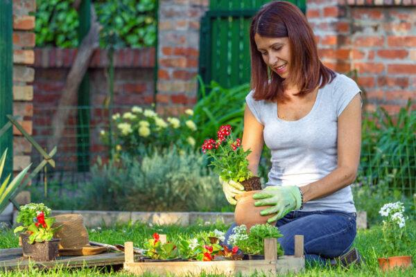 Zemina, květiny, život zahrady, tady se rodí pocit štěstí