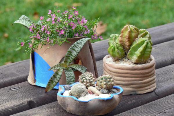 Keramika se k rostlinám hodí